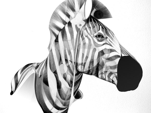 Zebra 01 | Artist Proof   (  ) by London based artist Von  — ShopVon |  HelloVon - 2