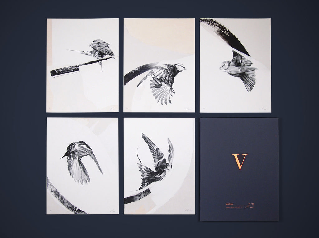 'Motion' Collector's Edition box Set ( Box Set ) screen prints and original art by London artist Von — www.shopvon.com