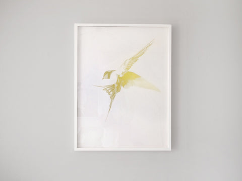 Flight 06 — Gold AP   ( Screen Print ) by London based artist Von  — ShopVon |  HelloVon - 1