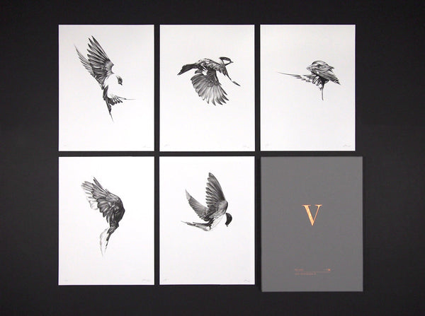 Flight Collector's Edition Box Set   (  ) by London based artist Von  — ShopVon |  HelloVon - 1