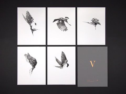Flight Collector's Edition Box Set (  ) screen prints and original art by London artist Von — www.shopvon.com