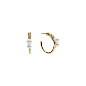 Stella Point Gold Earrings