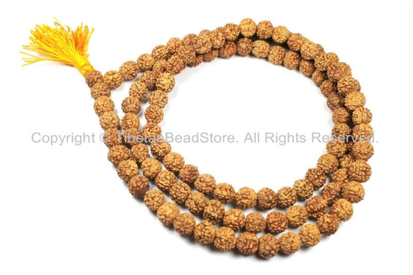 108 beads 10mm Natural Rudraksha Seed Beads - Nepal Tibetan Rudraksha Seed Prayer Mala Beads- TibetanBeadStore Mala Making Supplies - PB90Y