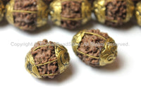 2 BEADS - Natural Rudraksh Nepal Tibetan Beads with Repousse Brass Caps - Ethnic Beads - Rudraksha Rudraksh Seed Beads - B2500-2