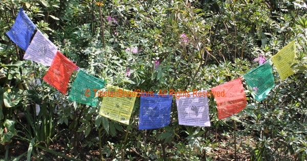 Set of 5 - Small Tibetan Lungta Wind Horse Prayer Flags - D15