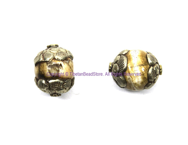 2 BEADS Ethnic Tibetan Antiqued Naga Conch Shell Beads with Tibetan Silver Metal Caps - Shell Beads Tibetan Beads - B3505-2