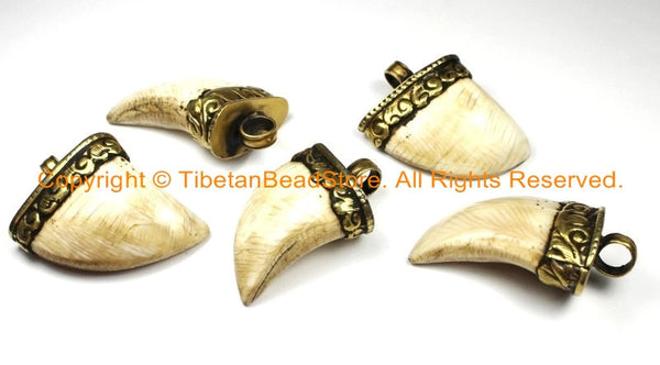 Tibetan Solid Naga Conch Shell Bear Claw Necklace Jewelry Pendant with Handcarved Tibetan Brass Cap- Boho Ethnic Gothic Tibet Nepal- WM6286