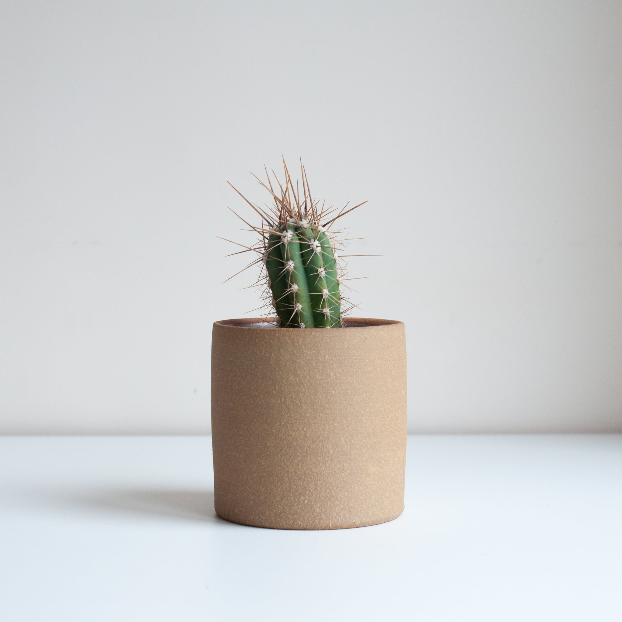 Small Planter - Oat, Planter - DOR & TAN | Contemporary Handmade Tableware