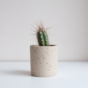 Small Planter - Speckled, Planter - DOR & TAN | Contemporary Handmade Tableware