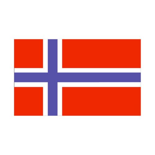 90 * 150 cm flag Various countries in the world Polyester banner flag    Norway
