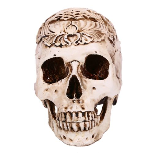 Engraved Flower Top Grade Skull Statue Human Skeleton Halloween