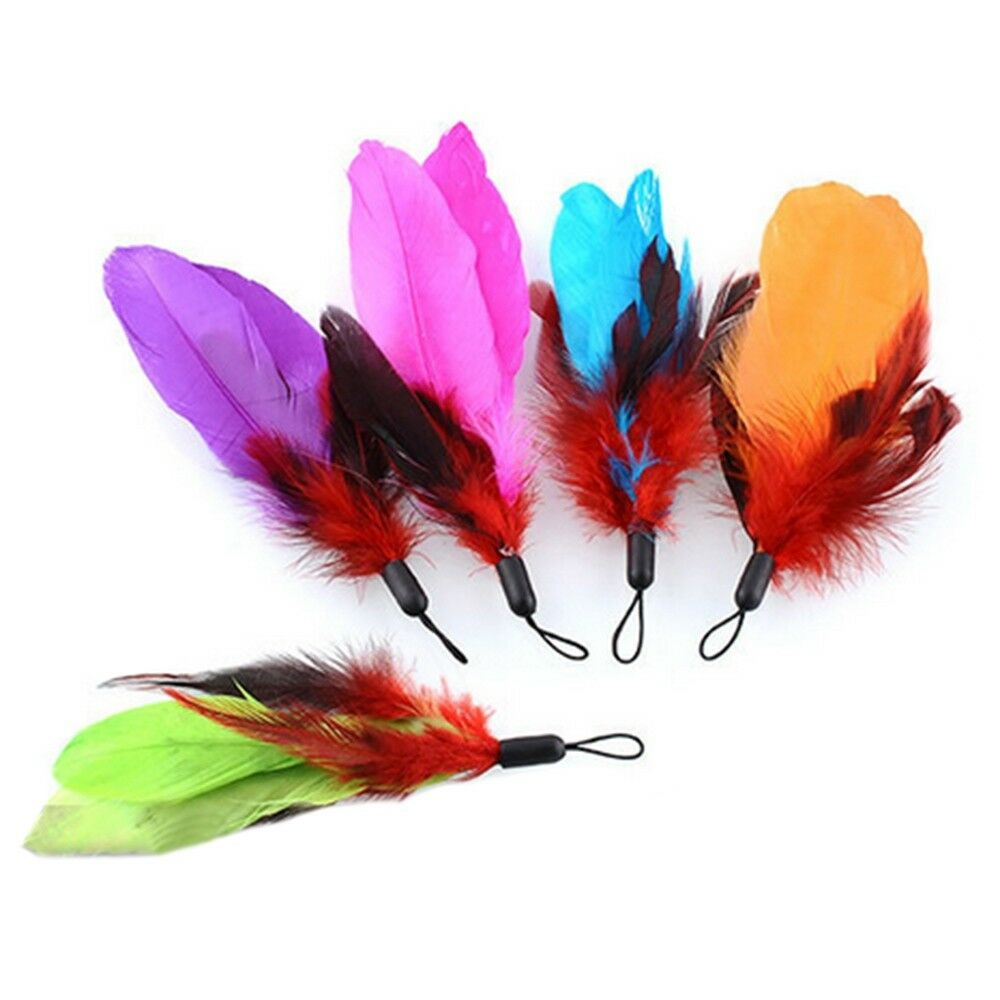Cat Pet Toy Colorful Feather Substitution 5 pack