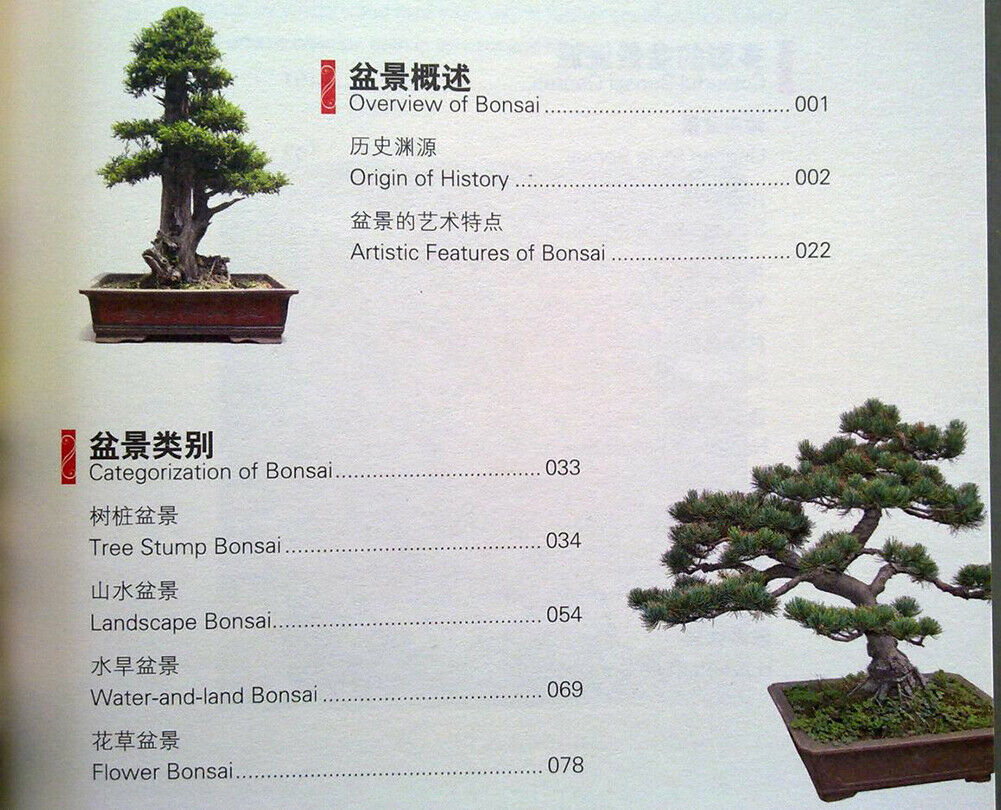 China Rot : Chinese Bonsai (Zweisprachig)