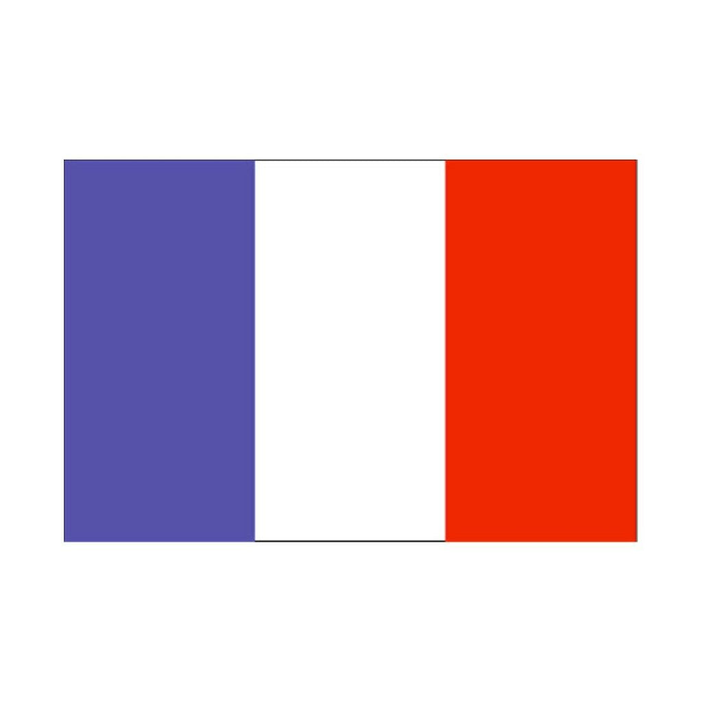 120 * 180 cm flag Various countries in the world Polyester banner flag    France