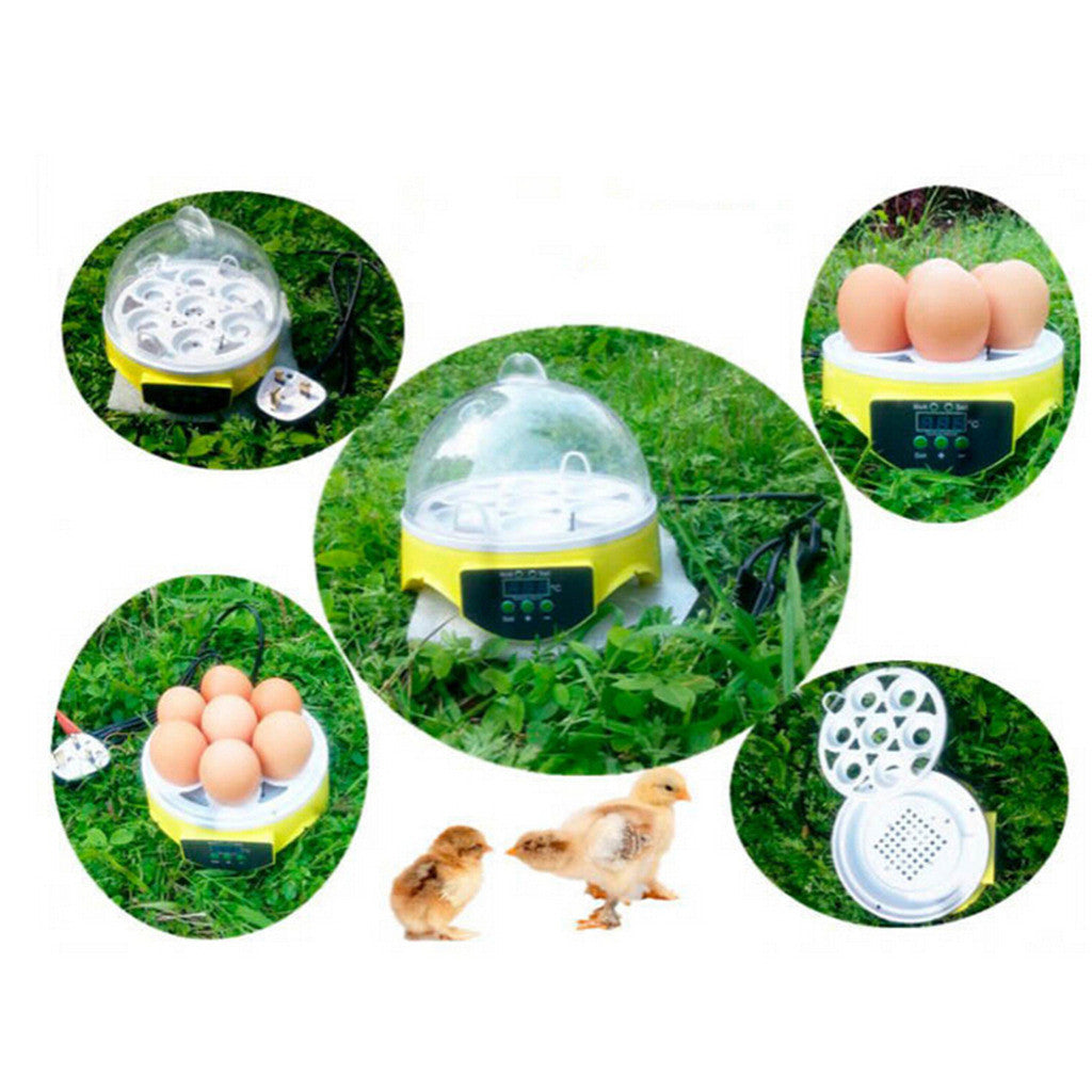 Mini Incubator 7 Egg Capacity Automatic Digital Chicken Duck Bird Hatch Tool - Mega Save Wholesale & Retail - 3