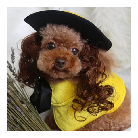 Pet Dog Clothes Cloak Wig Hat Suit   PF41 yellow   S - Mega Save Wholesale & Retail - 1