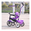 4 in 1  Baby Stroller Tricycle Trolley Carriage Bike Bicycle Wheels Walker with Harness - Mega Save Wholesale & Retail - 5