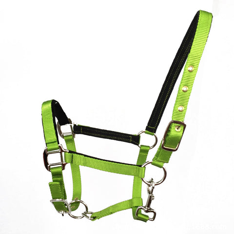 Bridle Headstall Wear-resisting Equestrianism Supplies  fluorescent green  M - Mega Save Wholesale & Retail