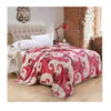 Two-side Blanket Bedding Throw Coral fleece Super Soft Warm Value  41 - Mega Save Wholesale & Retail