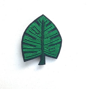 Cheese plant leaf