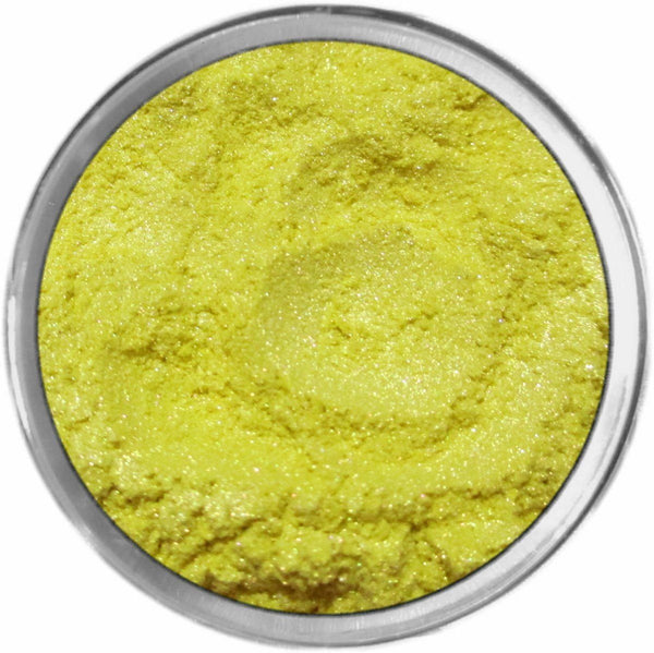 ROBUST Multi-Use Loose Mineral Powder Pigment Color