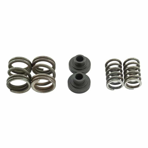 94-98 Cummins Governor Spring Kits For P7100 Pump