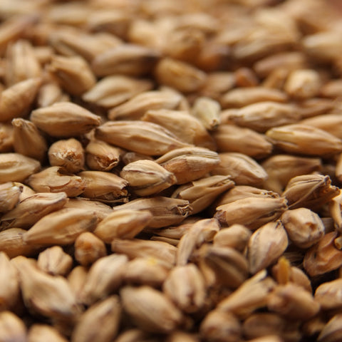 Beech Smoked Barley Malt Weyermann - Beyond The Grape On-Premise Winemaking & Home Brewing Supplies