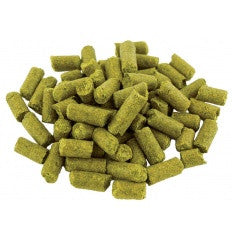 Hops Apollo 1oz Pellet - Beyond The Grape On-Premise Winemaking & Home Brewing Supplies