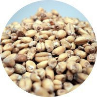 Wheat Malt Canadian OIO - Beyond The Grape On-Premise Winemaking & Home Brewing Supplies
