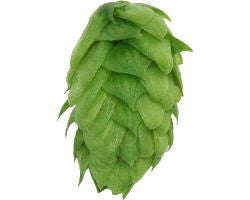 Hops Sterling 1oz Pellet - Beyond The Grape On-Premise Winemaking & Home Brewing Supplies