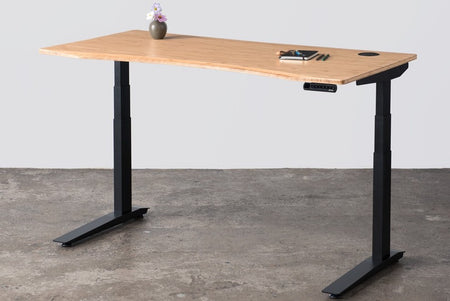 Beautiful electric standing desk. Best standing desk. Sharply priced standing desk. Easy to install and really durable standing desk.