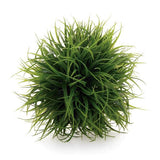 Decorative Grass Ball