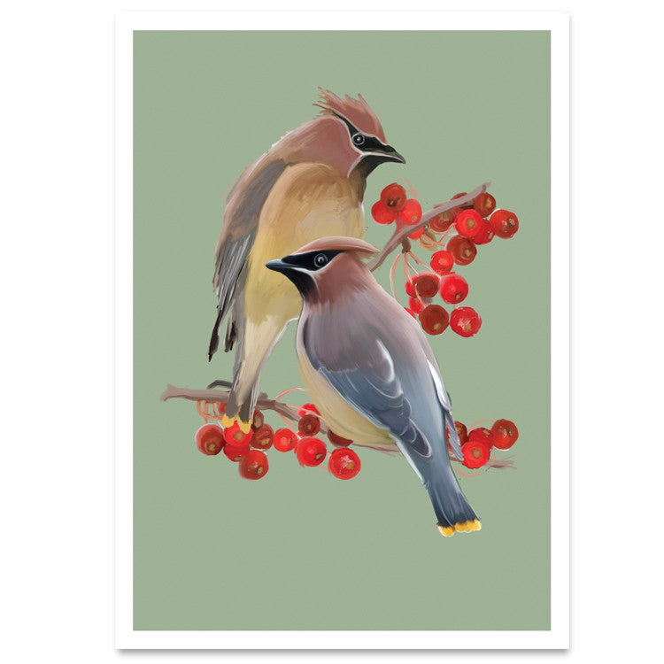 026hol waxwings berries christmas card 6 single cards wholesale only - Cheap Christmas Cards In Bulk