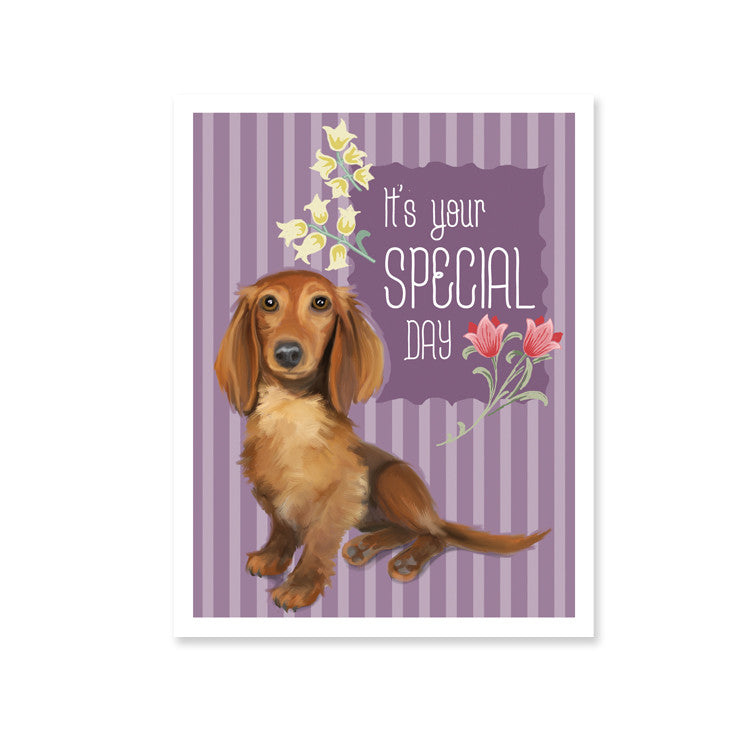 S160b Long Haired Dachshund Birthday 6 Single Cards Wholesale