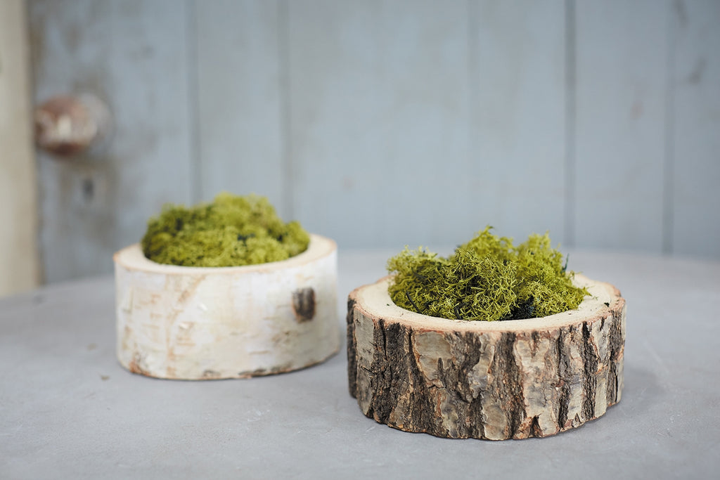 Forest Bowls