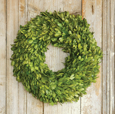 Preserved Boxwood Wreath Small