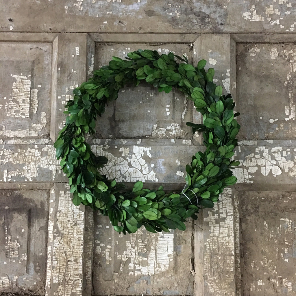 "9-3/4"" Round Preserved Boxwood Wreath"