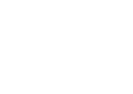 Stonefield Musical Instrument Company