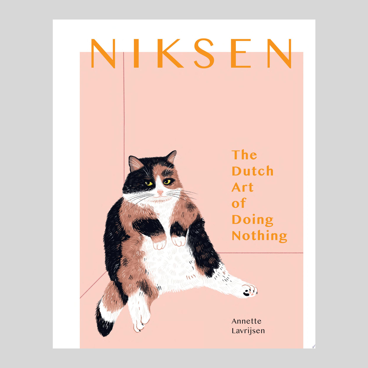 homeware-books-niksen-dutch-art-doing-nothing