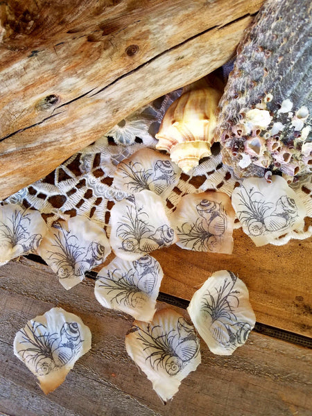Beach Party Table Runner~Table Centerpiece for Beach Theme Party~Beach Theme Bridal Shower Deocrations~ Sea Shell confetti~Table Confetti