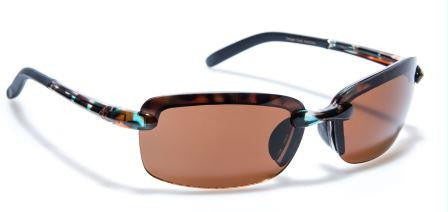 Enduro Toroise_Polarised Brown