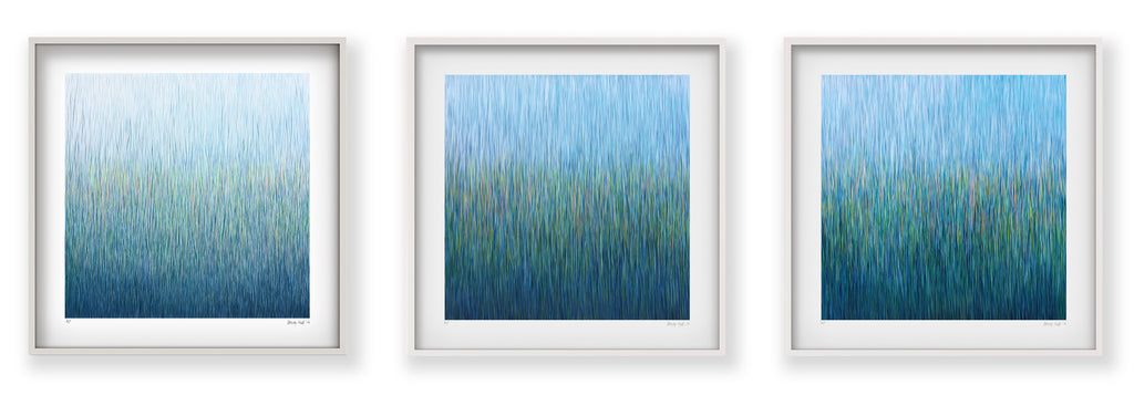 paradise rain a limited edition giclee print on paper in 525cm white shadow - White Shadow Box Frame
