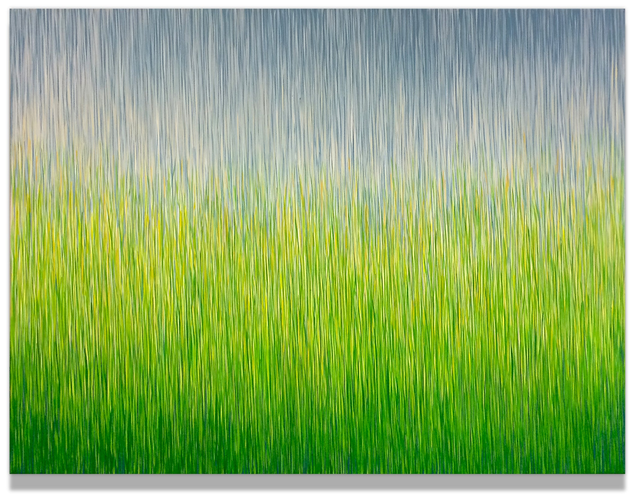Grasslands Rain - George Hall