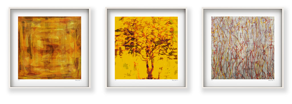 RAW HARVEST\' Limited Edition Giclee Print in 52.5cm white shadow box ...