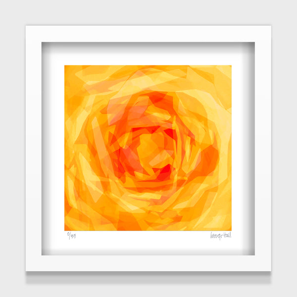 The Friend Rose - 25cm - White/Black Framed or Unframed