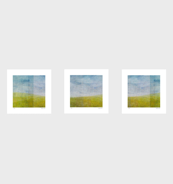 Third View Series- Set of 3- Small 25 x 25cm