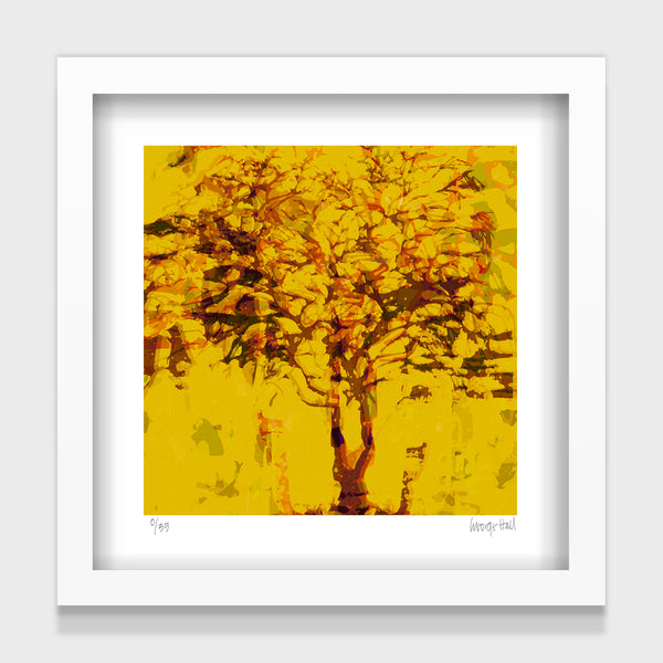 Wanaka Tree Sienna - 25cm - White/Black Framed or Unframed
