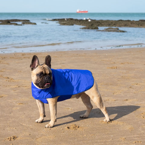 Dog Pacamac Rain Coat With Optional Harness Hole