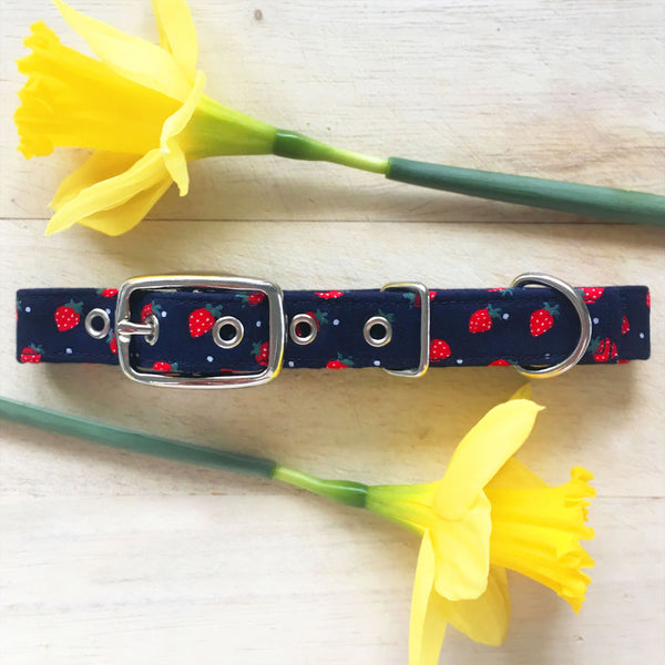 strawberry dog collar
