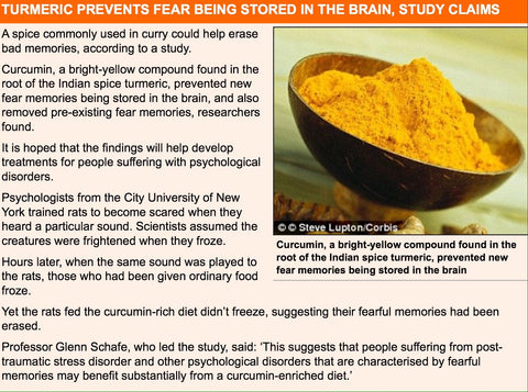 Study shows Turmeric helps cope with fear and pre-existing fear memories